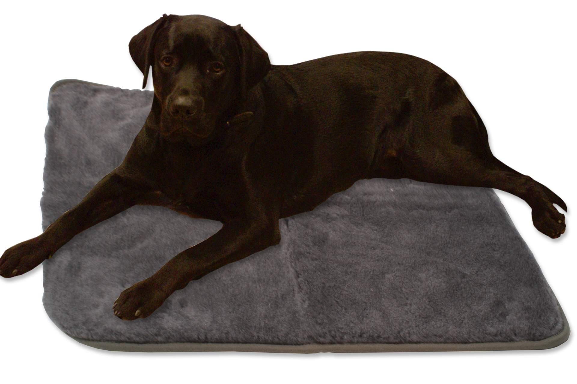 hundedecke decke 70 x 100 cm grau kissen hund schlafplatz haustier katze neu ebay. Black Bedroom Furniture Sets. Home Design Ideas